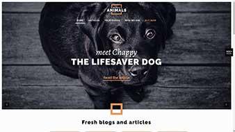 طراحی وب سایت حیوانات از وب مستران ایران