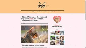 طراحی وب سایت حیوانات خانگی 2 وب مستران ایران