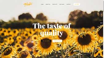 طراحی وب سایت عسل وبمستران ایران