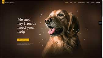 طراحی وب سایت نگهداری حیوانات وبمستران ایران