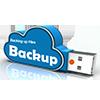 backup-website